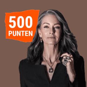 500 punten 3D punten